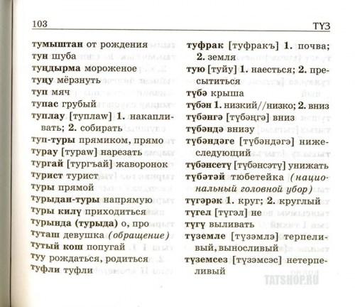 Школьный татарско-русский и русско-татарский словарь Image 2
