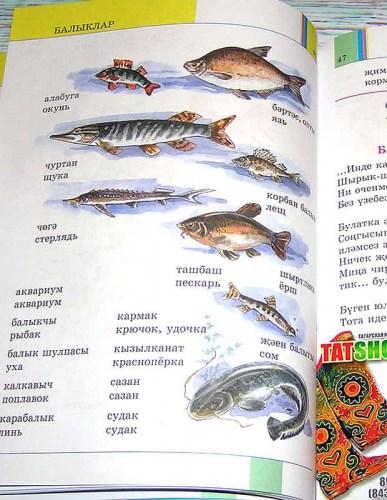 Иллюстрированный татарско-русский тематический словарь Image 2